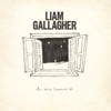 All You re Dreaming Of - Liam Gallagher mp3