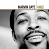 Ain t No Mountain High Enough - Marvin Gaye & Tammi Terrell mp3